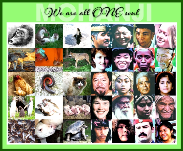 Mohanji quote - We are all one soul