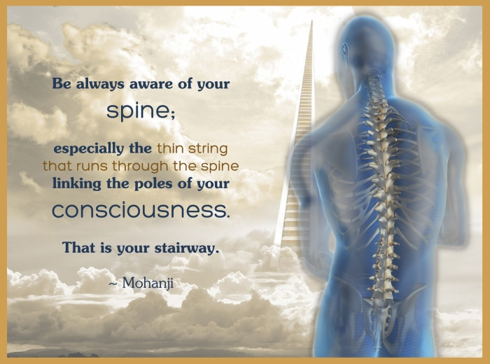 Mohanji quote - be always aware of your spine