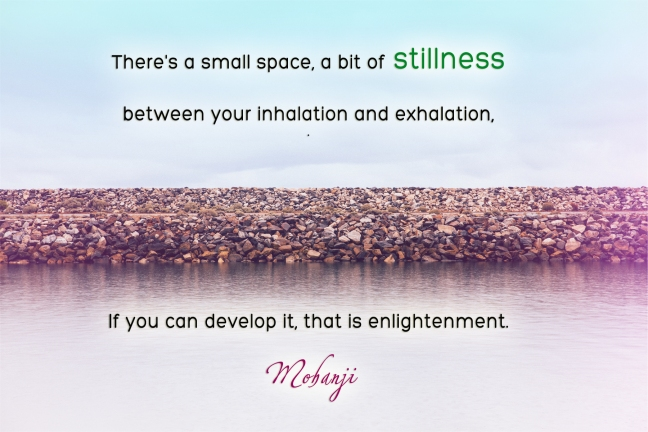 Mohanji quote - There is a small space, a bit of stillness