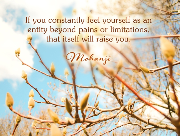 Mohanji quote - If you constantly feel yourself as