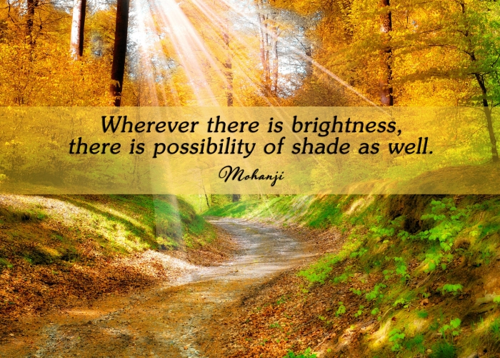 Mohanji quote - Wherever there is brightness