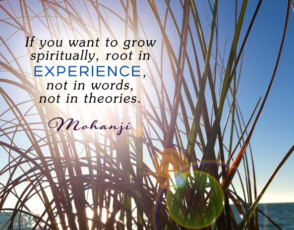 Mohanji quote - If you want to grow spiritually, root in experience