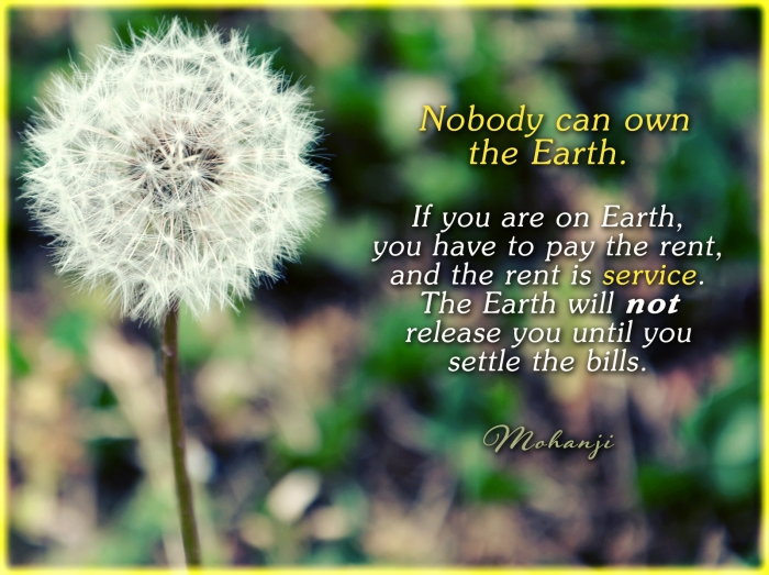 Mohanji quote - Nobody can own the Earth