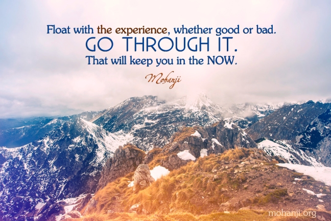 Mohanji quote -- Float with the experience