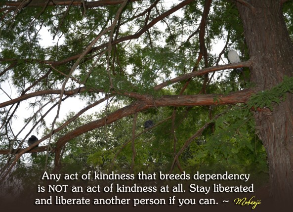 Mohanji quote - Any act of kindness