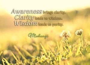 Mohanji quotes - Awareness brings clarity
