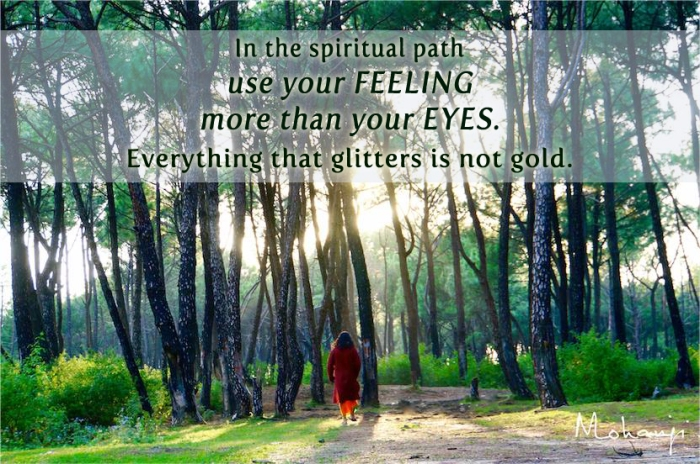 Mohanji quote - In the spiritual path use feeling more than eyes