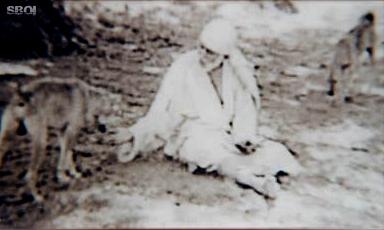 Shirdi Sai and a dog, original photo