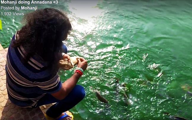 Mohanji feeding fish