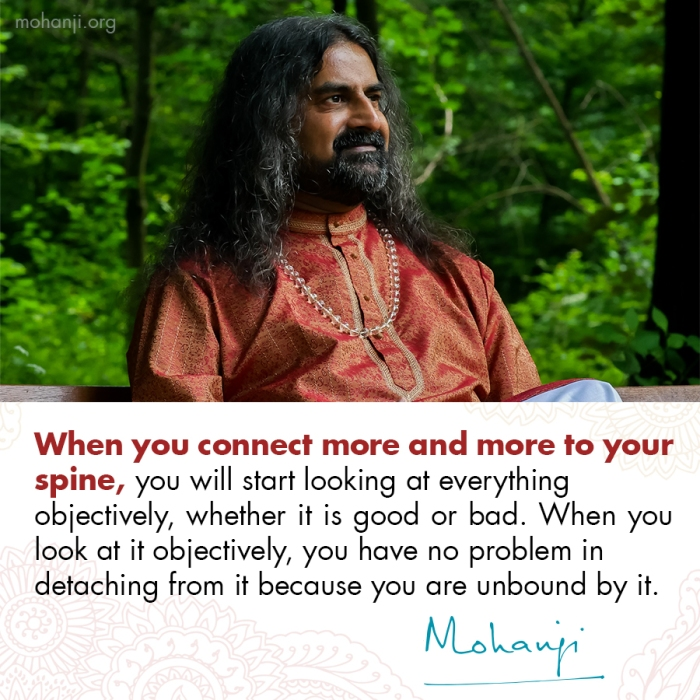 Mohanji quote - Connect to your spine 2
