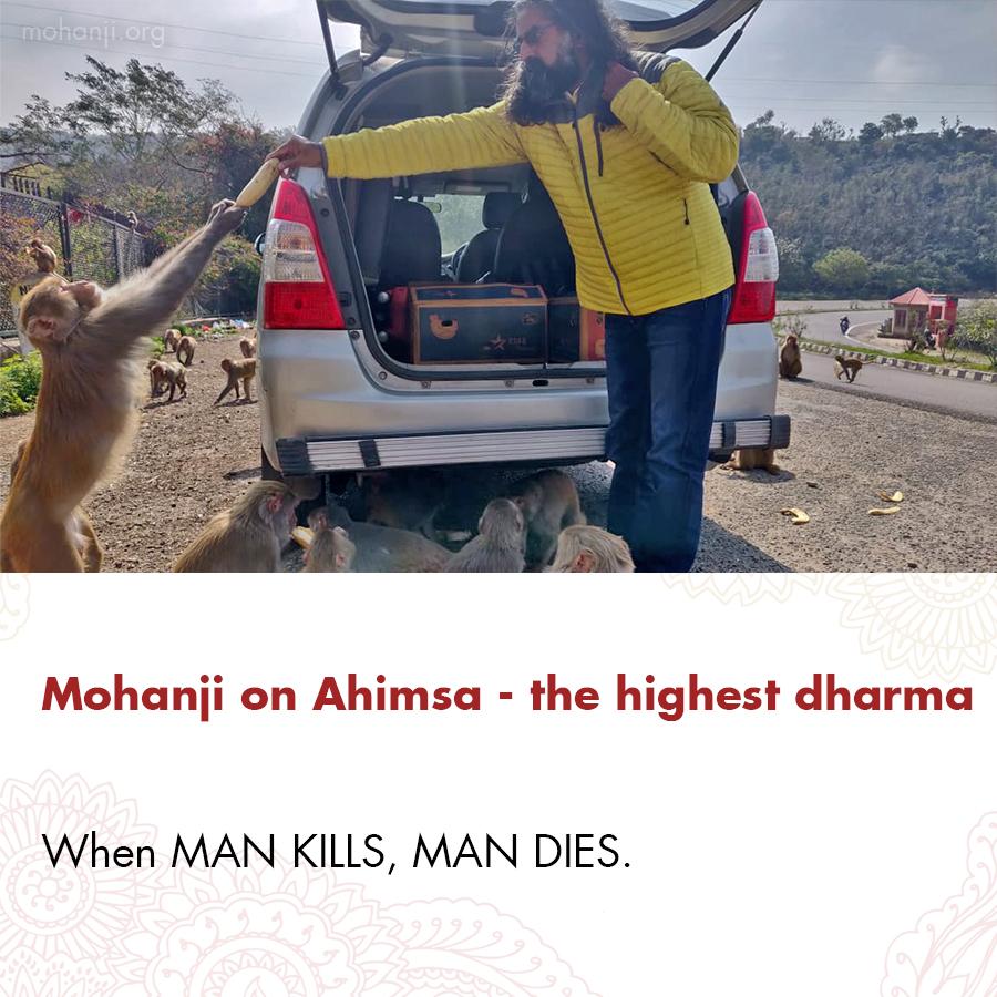 Mohanji quote - Ahimsa - the highest dharma 2