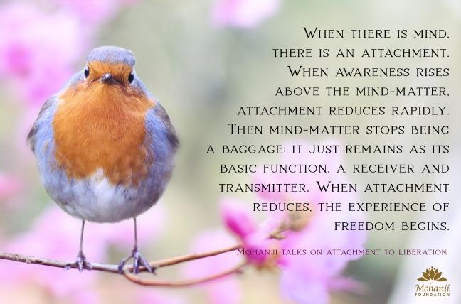 Mohanji quote - Attachment to liberation