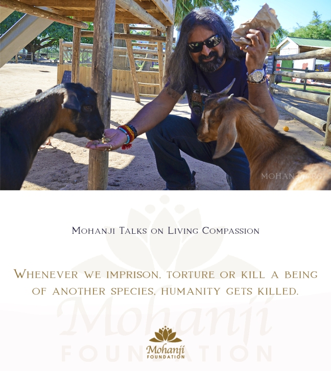 Mohanji quote - Living compassion