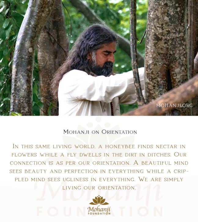 Mohanji quote - Orientation