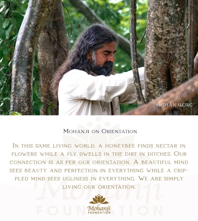 Mohanji quote - Orientation