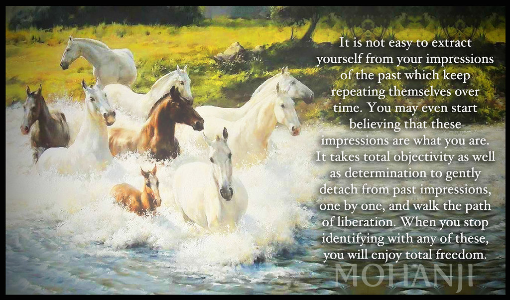 path horses